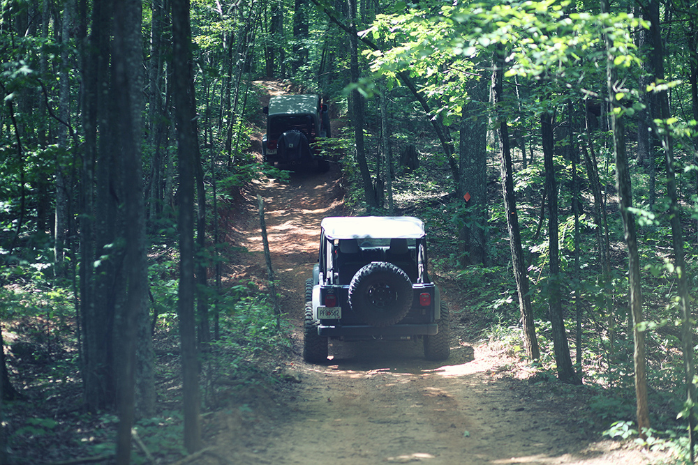 Jeeps on Off-Road Trail (High Res)